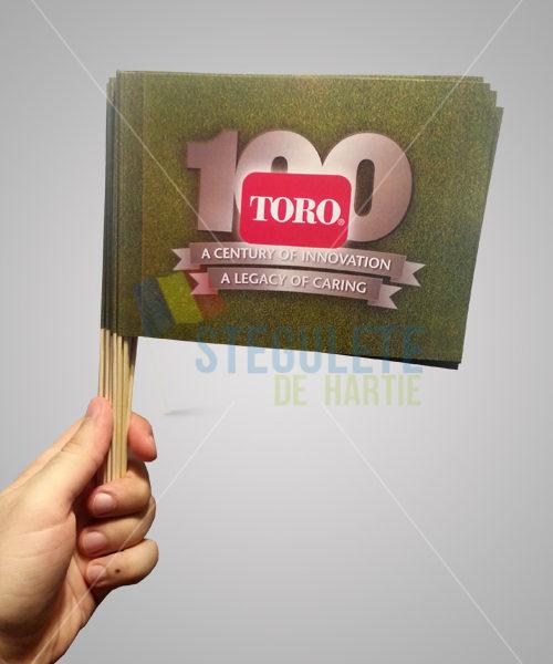 stegulet_hartie_a5_bat_bambus_steag_hartie_personalizat4