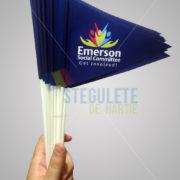 stegulet_hartie_a5_bat_plastic_fanion_personalizat2