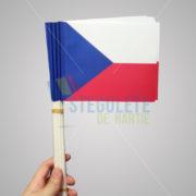 stegulet_hartie_a5_bat_plastic_nationale_cehia