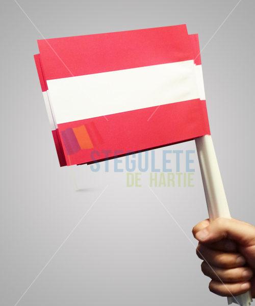 stegulet_hartie_a5_bat_plastic_nationale_danemarca
