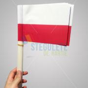 stegulet_hartie_a5_bat_plastic_nationale_polonia