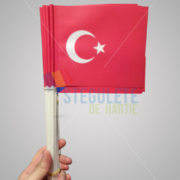 stegulet_hartie_a5_bat_plastic_nationale_turcia